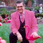 Trend primavera 2017 Flamingo Mania