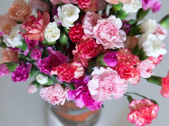 Tipi di fiori da regalare per le condoglianze