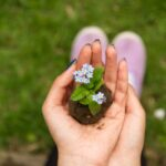 Tendenza micro giardinaggio cosa devi sapere